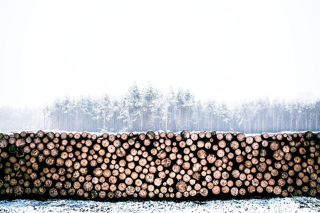 Drewno jako materiał opałowy