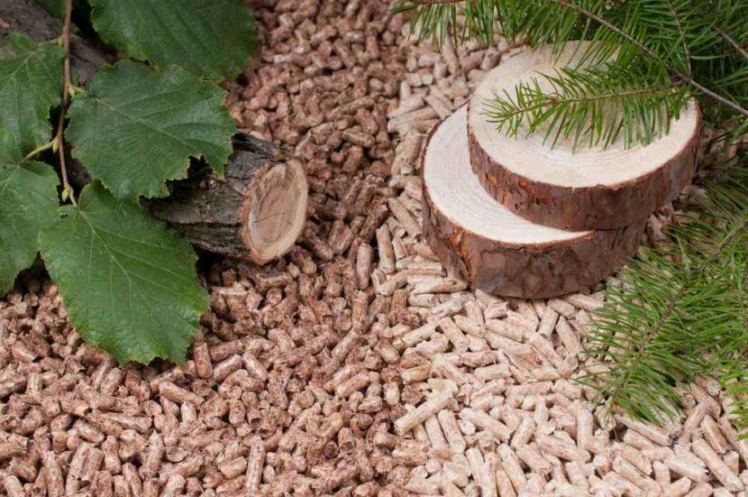 Pellet lepszy liściasty czy iglasty